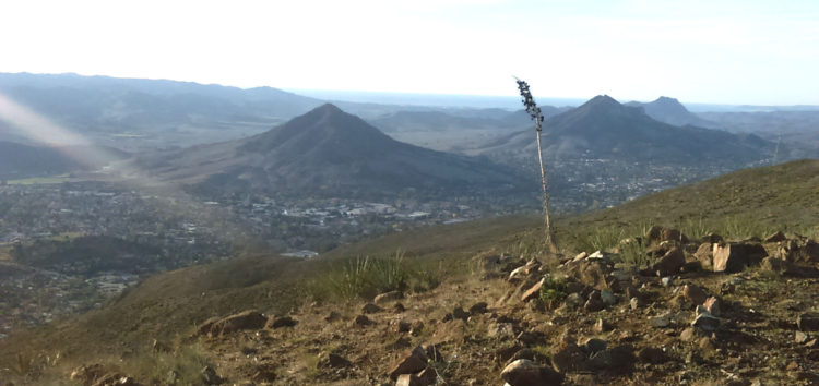 Editor's choice: best panoramic view in SLO