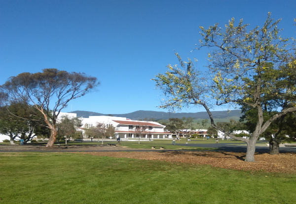 Cuesta to host childcare conference
