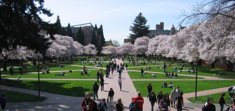 University Transfer Day