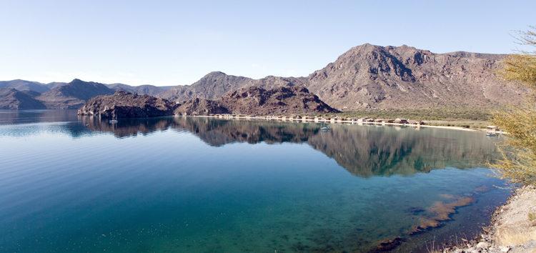 Marine biology professors plan to make a splash in Baja