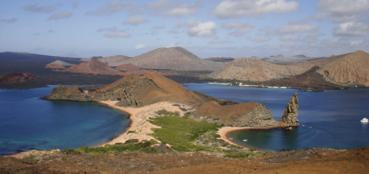 Join Cuesta for a class trip to the Galapagos Islands